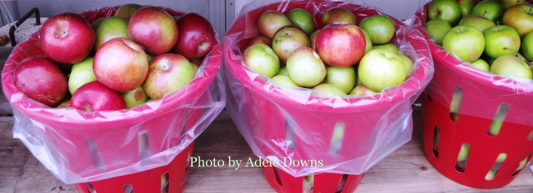 HO_AppleBaskets