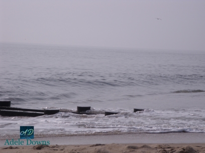 beach15signed