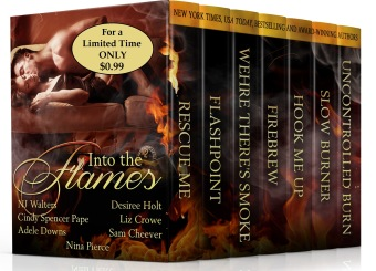 IntoTheFlames_Kindle_3d_sale