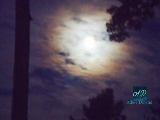 MoonOctobersigned