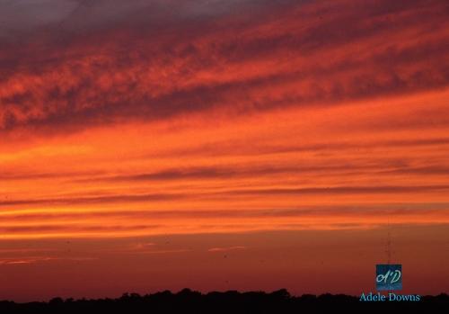 SunsetinRehoboth2signed