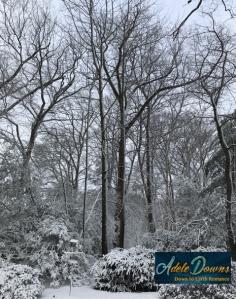 snowday-copy